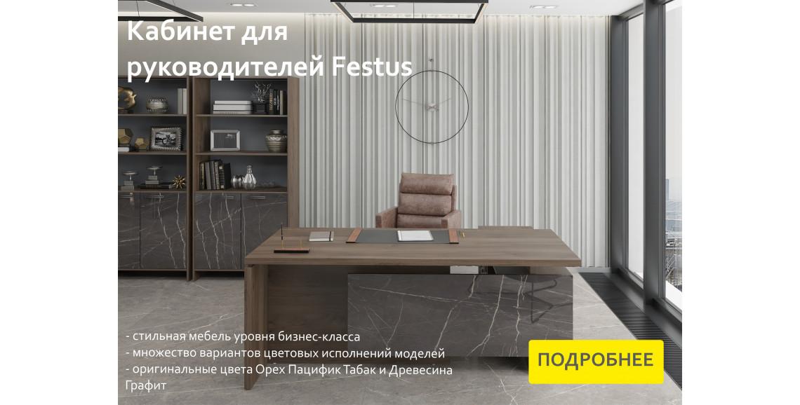 КАБИНЕТ FESTUS